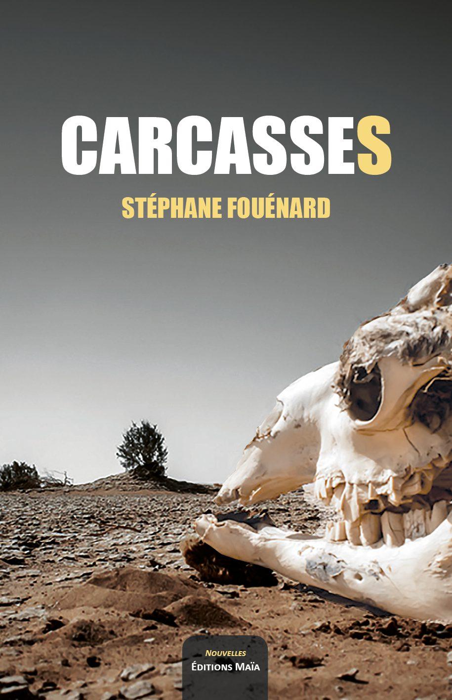Entretien avec Stéphane Fouénard – Carcasses