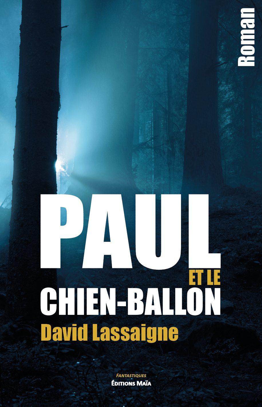 Entretien avec David Lassaigne – Paul et le chien-ballon