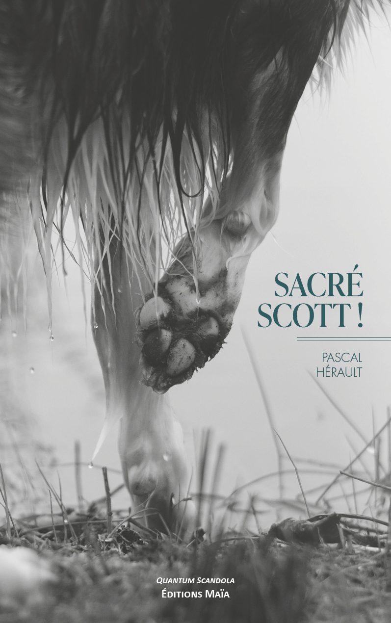 Entretien avec Pascal Hérault  – Sacré Scott !